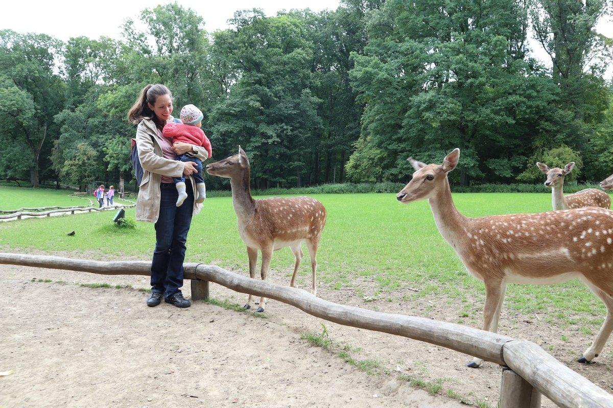 Reisetipps Düsseldorf mit Baby Tiere