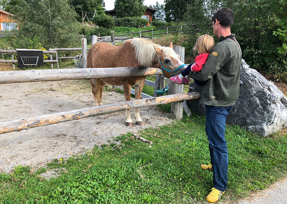 Familienhotel Bayern Pferde