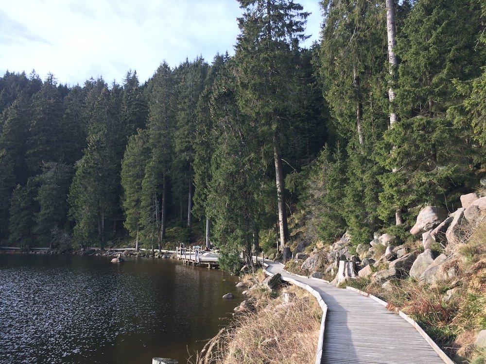 Schwarzwald mit Kindern See