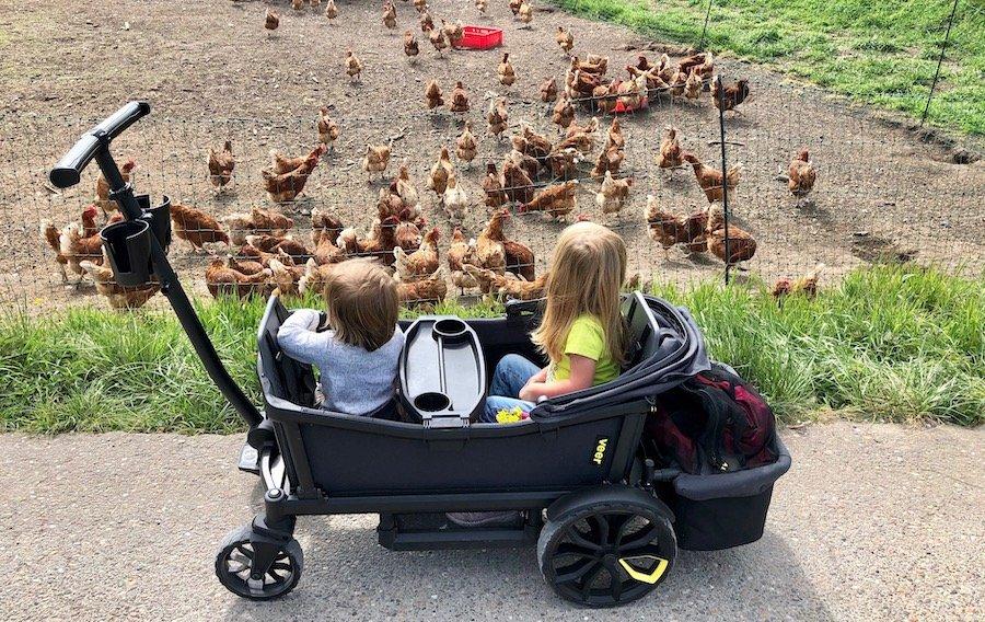 Urlaub Zuhause mit Kindern Tipps Natur Tiere