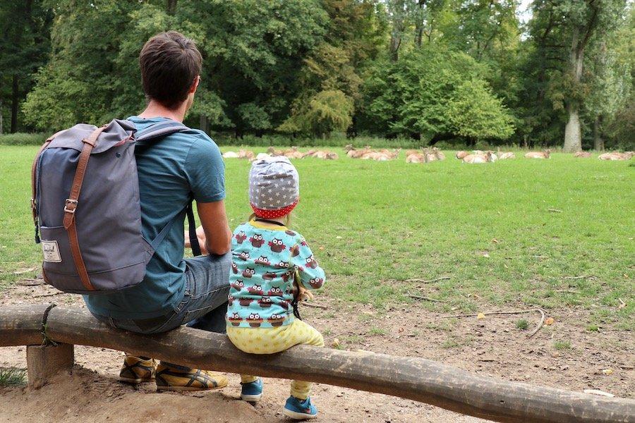 Düsseldorf mit Kindern Ausflugsziele Grafenberg Wald