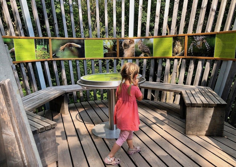 Baumwipfelpfad Saarschleife mit Kindern
