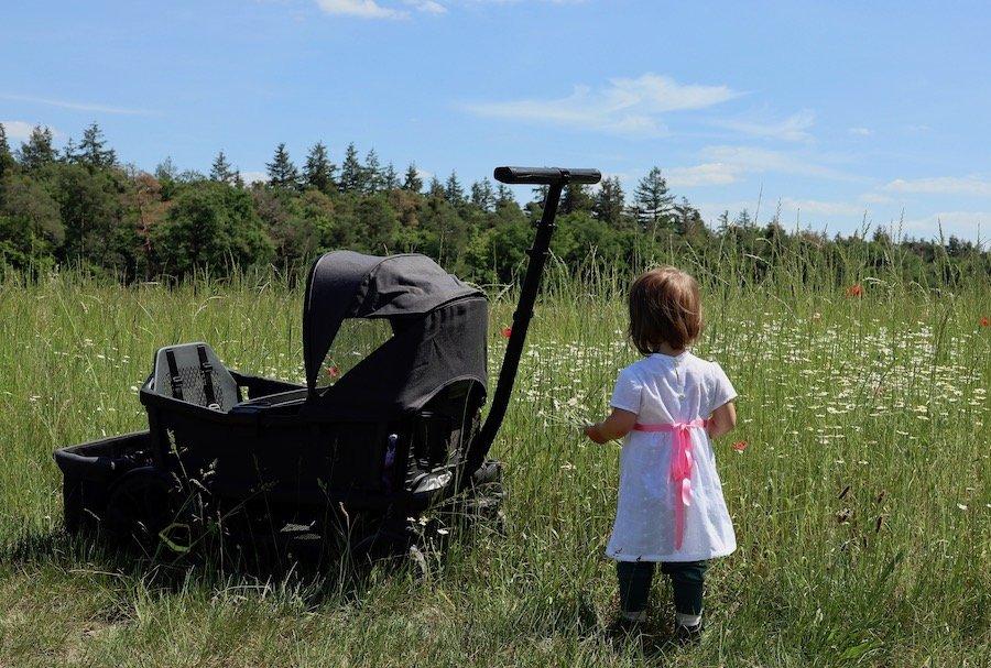 Veer All-terrain Cruiser Bollerwagen für Babys und Kinder