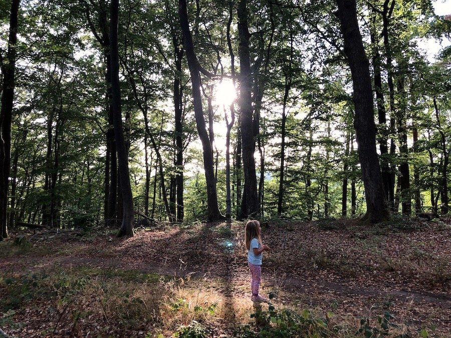 Altschlossfelsen Eppenbrunn Pfälzerwald mit Kindern
