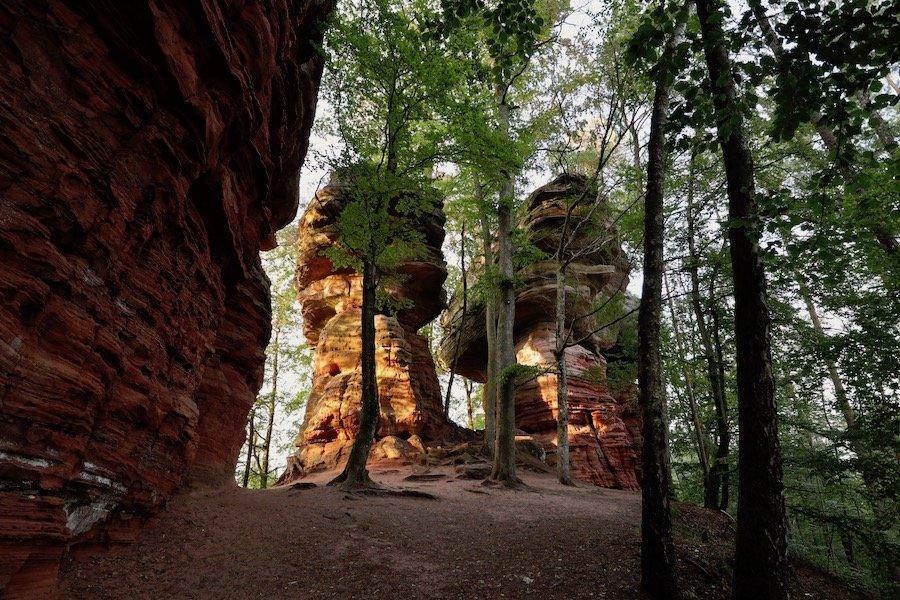 Altschlossfelsen Pfälzerwald Tipps Ausflug