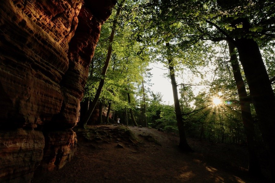 Altschlossfelsen Pfälzerwald Sonnenuntergang