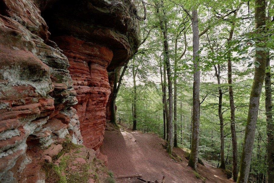 Altschlossfelsen Pfälzerwald Tipps Unterkunft