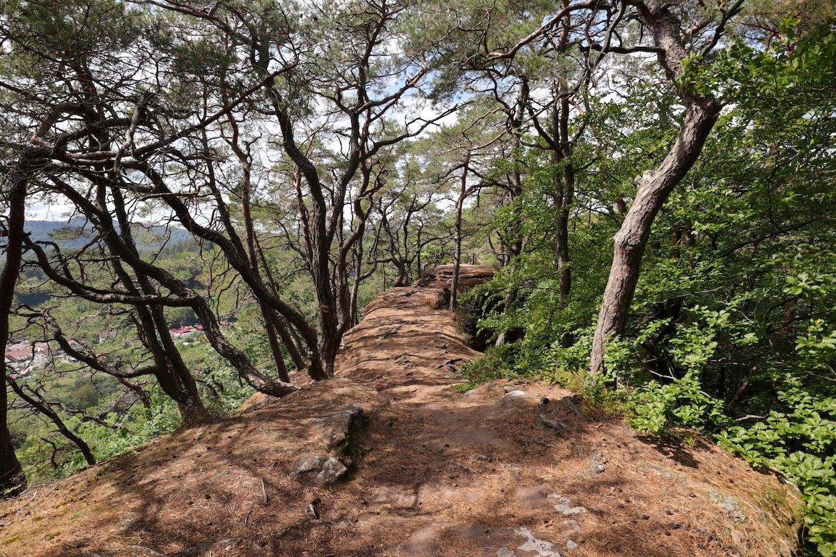 Dahner Felsenland Wandern